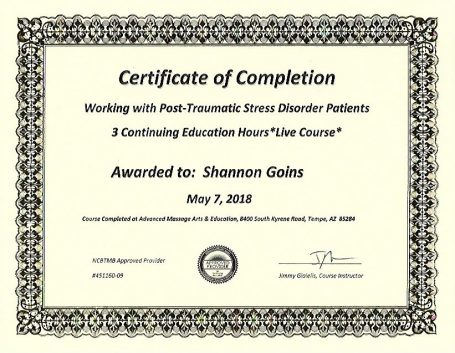 Working with Post Traumatic Stress Disorder Patients (3 Hours)
