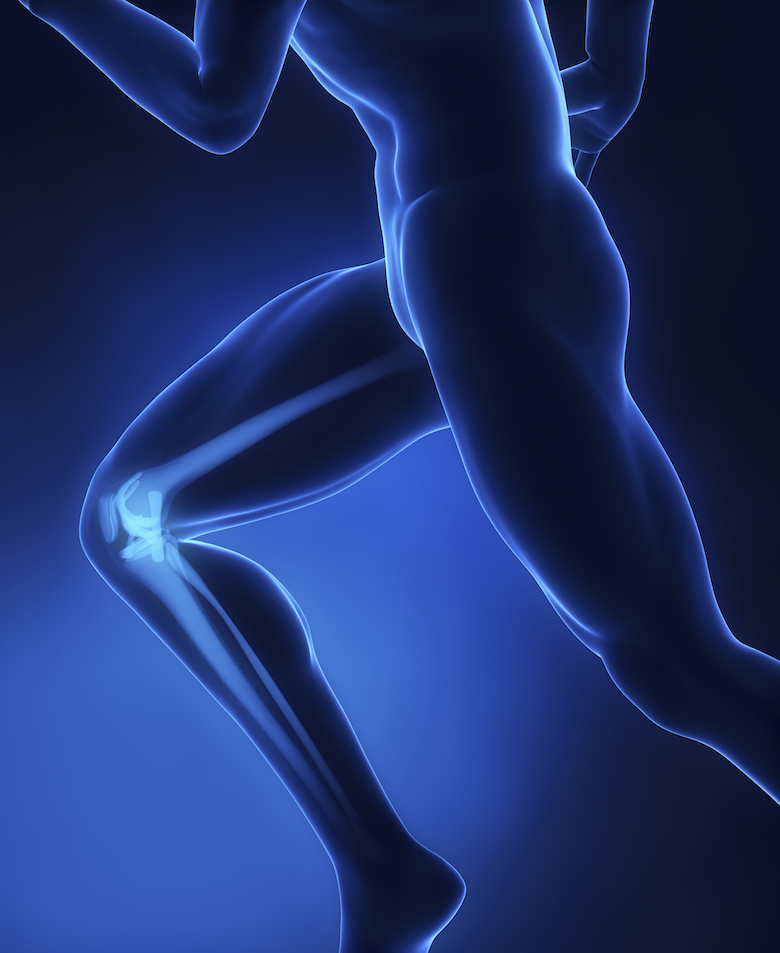 Knees support our body weight - knee replacement recovery therapy
