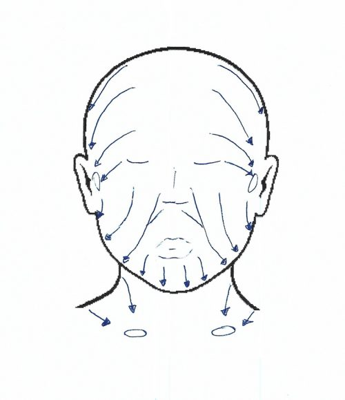 lymphatic drainage pathways for the face - facelift - What to Do When You Can't Get a Lymphatic Massage After Plastic Surgery