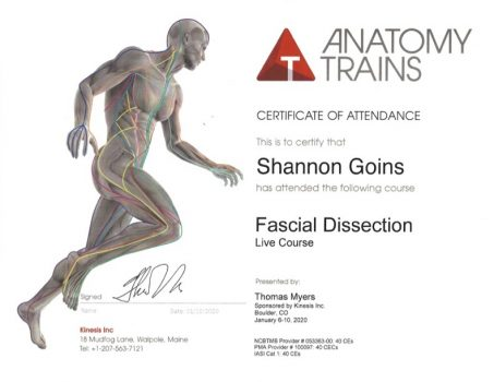 Fascial Dissection Course