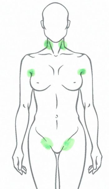 Lymphatic Nodes Important for Self Lymphatic Massage - Albuquerque