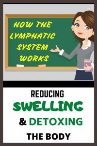 Video - How the Lymphatic System Works